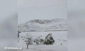Tuyết dày 1 mét phủ trắng sa mạc nóng nhất hành tinh