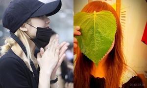 10 mỹ nhân Kpop sở hữu gương mặt nhỏ đáng kinh ngạc