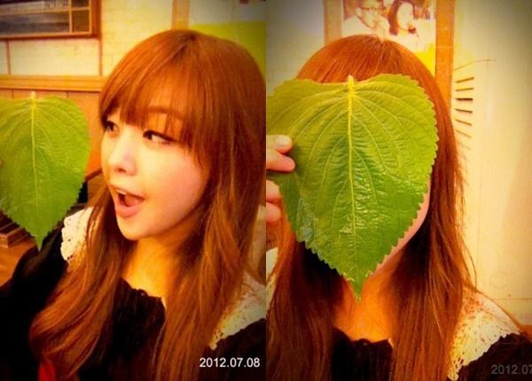 3-dac-diem-co-the-cua-idol-nu-kpop-khien-fan-han-phat-cuong-8