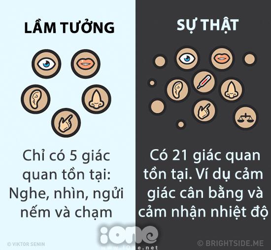 nhung-su-that-hau-het-moi-nguoi-deu-hieu-nham-ve-co-the-4