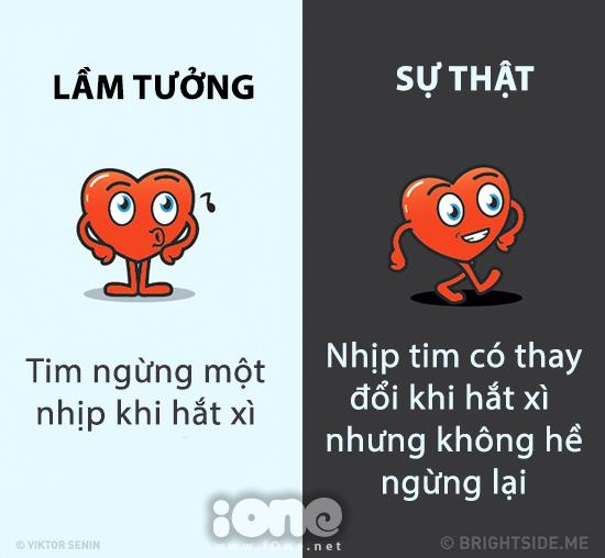 nhung-su-that-hau-het-moi-nguoi-deu-hieu-nham-ve-co-the-6