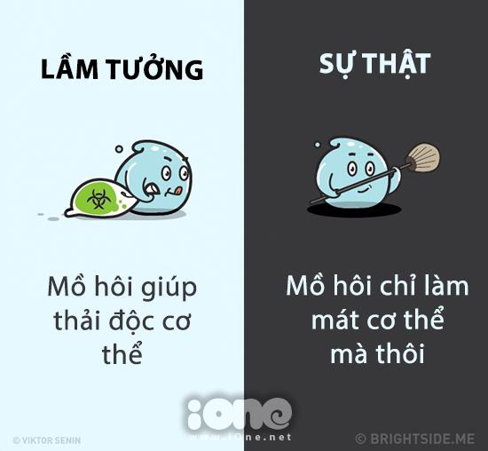 nhung-su-that-hau-het-moi-nguoi-deu-hieu-nham-ve-co-the-8