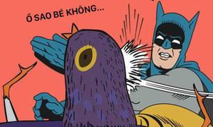 Loạt ảnh chế cười 'mỏi miệng' về chú chim màu tím