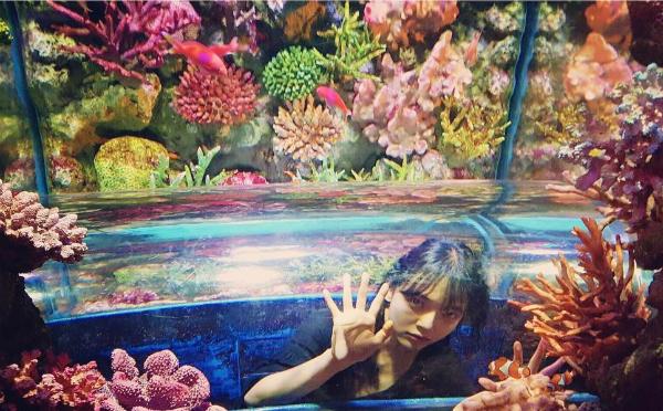 sao-han-17-2-seol-hyun-mac-vay-2-day-goi-cam-tae-yeon-khoe-dang-dong-ho-cat-4