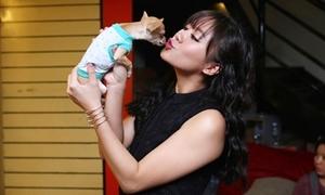 Văn Mai Hương khóc hết nước mắt khi cún cưng 'ra đi'