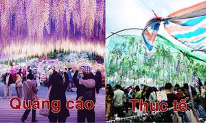 Những lễ hội hoa ở Hà Nội gây tranh cãi về chất lượng