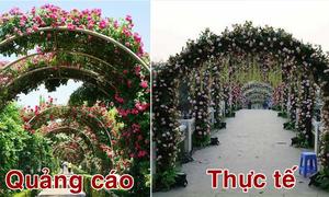 Khách đến Lễ hội hoa hồng ở Hà Nội 'kêu trời' vì khác ảnh quảng cáo