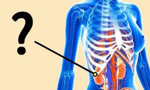 Quiz: Bạn thấu hiểu cơ thể mình đến đâu?