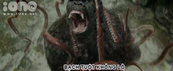 kong-6-sinh-vat-co-dai-khong-dung-hang-tren-dao-dau-lau-4