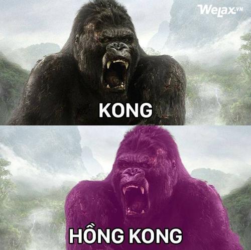 kong-roi-dao-dau-lau-lac-troi-giua-doi-6