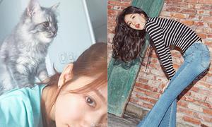 Sao Hàn 18/3: Suzy khoe dáng miễn chê, Park Shin Hye bị mèo cưng 'bắt nạt'