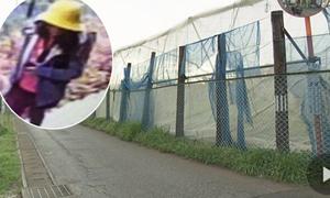 Thủ phạm vụ bé gái Việt được phán đoán là người 'am hiểu địa hình'
