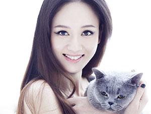 quiz-dau-khong-phai-la-sao-han-2