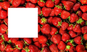 Hoàn thiện mảnh ghép còn thiếu trong các loại quả