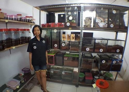 co-gai-nuoi-1500-con-nhen-doc-nhat-hanh-tinh-lam-thu-cung