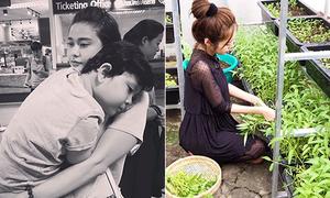 Sao Việt 4/5: Con trai Trương Quỳnh Anh lớn gần bằng mẹ, Elly Trần đảm đang việc nhà