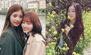 Sao Hàn 6/5: Irene xinh tươi hơn hoa, Tzuyu - Momo ôm ấp ngọt ngào