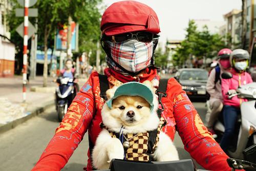 muon-kieu-thoi-trang-chong-nang-cua-hoi-ninja-duong-pho-1