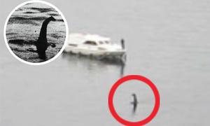 'Quái vật hồ Loch Ness' tái xuất, ngóc đầu gần thuyền chở khách