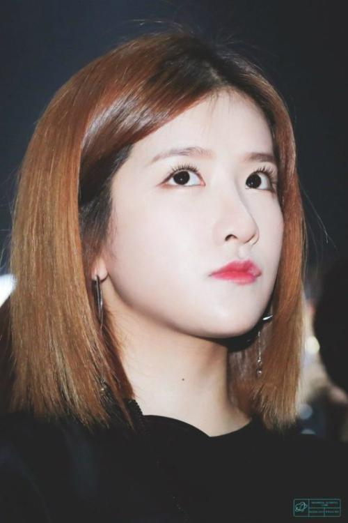9-idol-kpop-chung-minh-mieng-nho-moi-mong-cung-du-dep-1