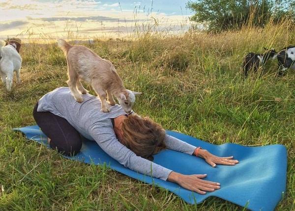yoga-de-de-giam-can-tang-cuong-suc-khoe-4