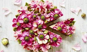 Bánh gato phủ đầy hoa chỉ muốn ngắm mãi chẳng nỡ ăn