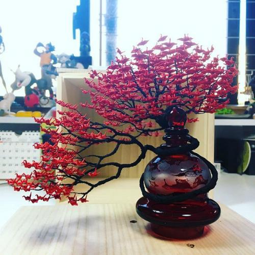 cay-bonsai-duoc-xep-tu-hang-nghin-con-hac-giay-3