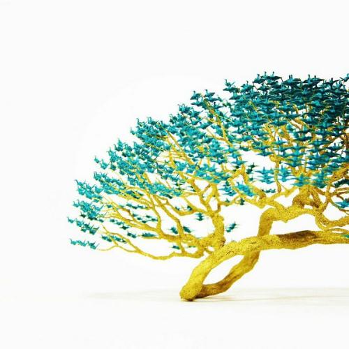 cay-bonsai-duoc-xep-tu-hang-nghin-con-hac-giay-4