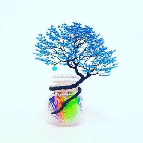 cay-bonsai-duoc-xep-tu-hang-nghin-con-hac-giay-5
