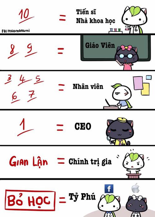cuoi-te-ghe-23-6-nhin-diem-thi-doan-nghe-nghiep-tuong-lai