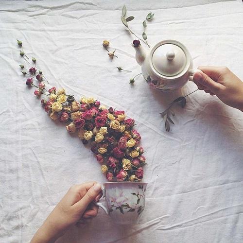 ngay-ngat-voi-bo-anh-binh-tra-hoa-hot-nhat-instagram-3