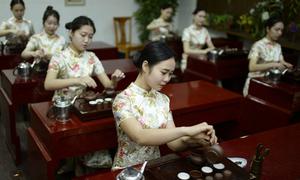 Ngôi trường 'thần bí' toàn nữ sinh xinh đẹp ở Trung Quốc