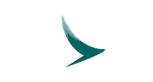 nhanh-tri-nhin-logo-doan-ten-hang-hang-khong-4