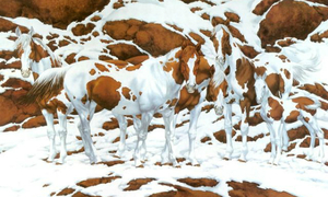 Hoa mắt đếm số ngựa có trong hình