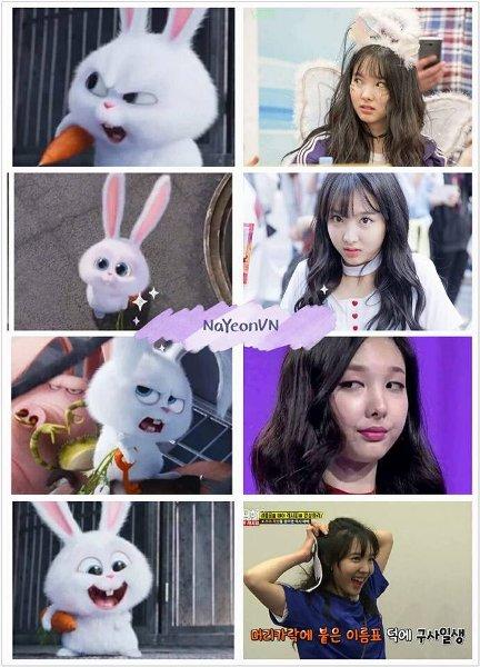 5-idol-kpop-noi-tieng-voi-ve-ngoai-dang-yeu-nhu-loai-tho-10