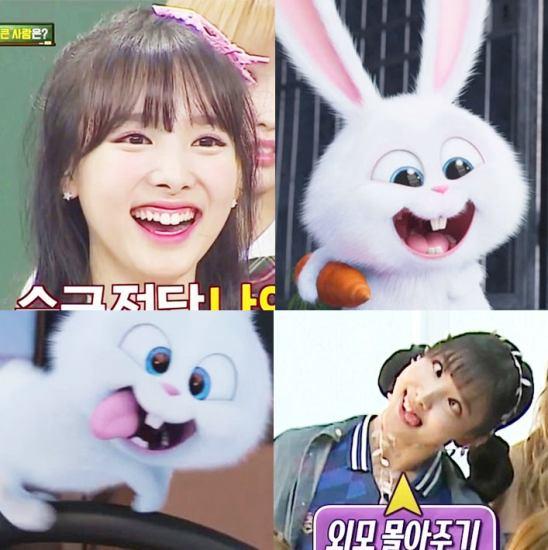 5-idol-kpop-noi-tieng-voi-ve-ngoai-dang-yeu-nhu-loai-tho-7