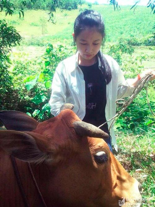 Phan Thị Minh vừa học vừa phải giúp bộ mẹ việc nhà, việc đồng áng.