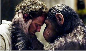 Loạt phim 'Hành tinh Khỉ' gây rúng động vì lột trần tội ác của con người