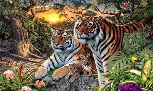 Người có trí tưởng tượng siêu phàm mới đếm đủ số hổ có trong hình