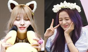 Những idol nữ Kpop hút fan bởi vẻ ngốc nghếch đáng yêu