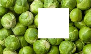 Hoàn thiện mảnh ghép còn thiếu trong các loại rau