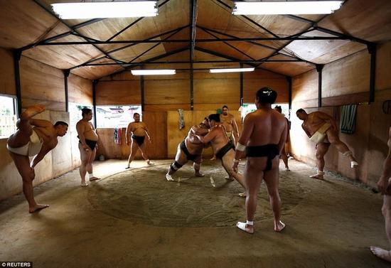 cuoc-song-khac-nghiet-trong-mot-lo-luyen-sumo-o-nhat-2
