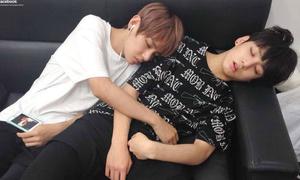 8 thần tượng Kpop có thói quen đáng yêu khi ngủ
