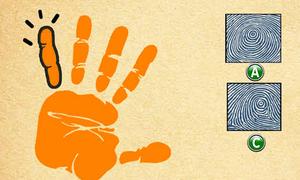Quiz: Vân tay ngón út nói gì về khả năng quan sát của bạn?