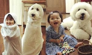 Nhìn bộ ảnh này, ai cũng muốn có một cô con gái và một chú cún cưng