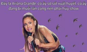 Ảnh chế tràn ngập sau việc Ariana Grande hủy show