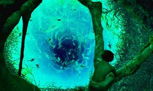 Cảnh phim rợn người khiến khán giả tranh cãi về ý nghĩa trong 'Life of Pi'