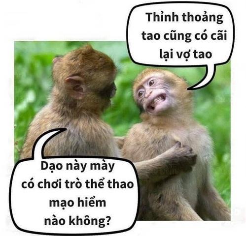 cuoi-te-ghe-7-9-doi-khong-nhu-ngon-tinh-2-4