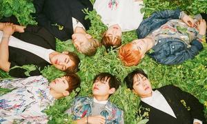 Top 7 idol Kpop làm nên danh tiếng cho công ty quản lý