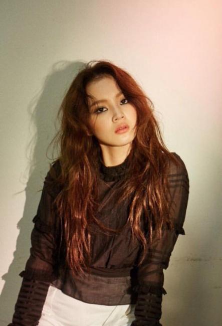 9-idol-nu-co-than-hinh-day-dan-tro-thanh-doi-tuong-tan-cong-cua-netizen-han-5